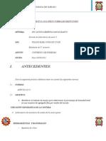 P. SUELOS  INFO. N°03