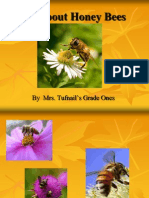 All About Honey Bees - 14 Pag