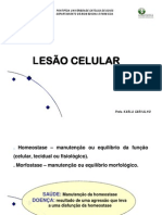 Aula 2.Lesao Celular 2014 (1)
