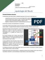 Fisiopatologia Del Shock.