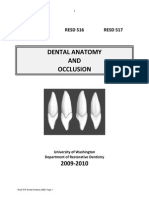 Dental Anatomy Questions