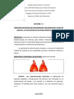 Caracterizacion Proyecto Listo (1)
