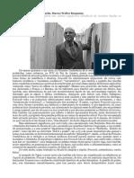 Foucault Entre Nietzsche