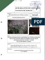 Estudio Hidrogeologico Naciente de Marcos Damn-09-001