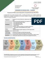Convocatoria OEA SUAGM 04ago14