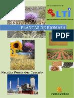 Plant as Debi Omasa