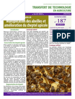 elevage abeilles.pdf