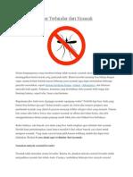 6 Cara Alami Agar Terhindar Dari Nyamuk