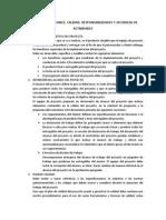 ALCANCE DE LA ADMINISTRACION DE PROYECTOS