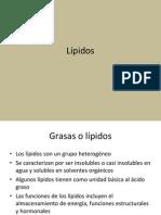 9_Lípidos