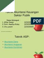 Teknik Akuntansi Sektor,Publik
