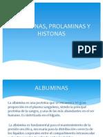 Albuminas, Prolaminas y Istonas