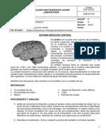 GUIA 2 LABORATORIO BIOLOGIA 8.pdf