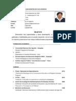 Curriculum Vitae 2014 Puno