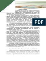 AA - Ciclo 3 - Poriferos e Cnidarios