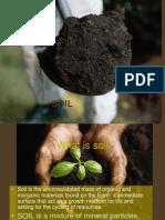 soil unit ppt review