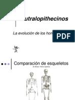 Autralopithecinos[1]