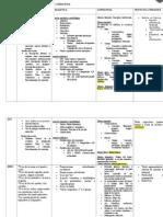 Planificación 1º a 5º Conceptual