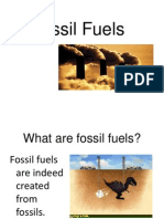 Fossil Fuels Report