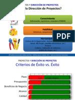 Introduccion Gestion Proyectos LIM 2014