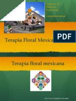 Terapia con Flores Mexicanas
