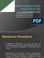 Anemia Hemolitica Defectos de Membrana