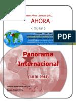 Panorama Internacional Julio 2014 Sal