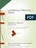 DESARROLLO PRENATAL Y PARTO.pptx