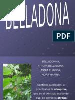 BELLADONA tropismo patogenesias para mi pagina (1) (1).ppt