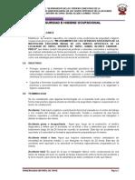 2. Seguridad e Higiene Ocupacional Santos