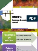 SEMANA 14