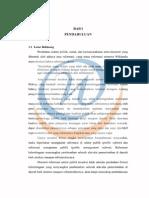 reformasi sektor publik.pdf