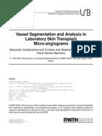 Vessel Segmentation and Analysis in Laboratory Skin Transplant Micro-angiograms