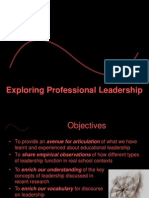 Exploring Professional Leadership