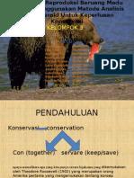 Monitoring Reproduksi Beruang Madu Dengan Menggunakan Metode Analisis