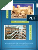 CB Report on Mall Culture-Anubhav Mishra
