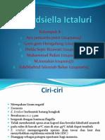 PPT. KELOMPOK 8 PPOA (Edwardsiella Ictaluri)