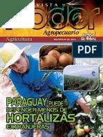 PODER AGROPECUARIO - AGRICULTURA - N 20 - 2013 - PARAGUAY - PORTALGUARANI