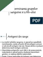 98687639 Determinarea Grupelor Sanguine Si a Rh Ului