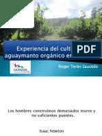 Aguaymanto Orgánico en Celendín - CEDEPAS NORTE