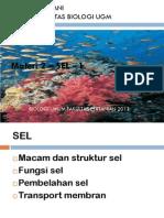 Biologi_Umum_2_-_Pertanian_UGM_-__Struktur_dan_Fungsi_Sel-2[1]