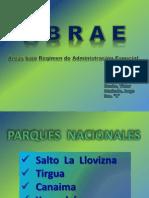 ABRAE ((((DIAPOSITIVAS AREAS BAJO REGIMEN DE ADMINISTRACION ESPECIAL)))), 24 DIAP..pptx