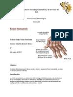 Práctica de Factor Reumatoide