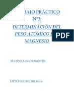 PESO DEL MAGNESIO.docx
