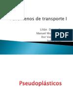pseudoplasticos-110311031600-phpapp02
