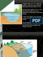 Aquatic Ecosystem2-4