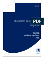 Spain_Endesa's Smart Metering Roll-out Programme