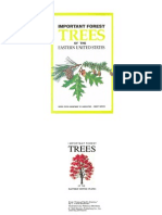 Important Forest Trees of the Eastern United States