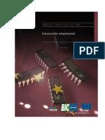 innovacion-empresarial-131025094421-phpapp01_(1).docx