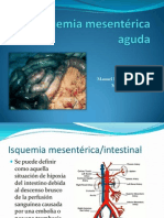 Isquemia mesentérica aguda